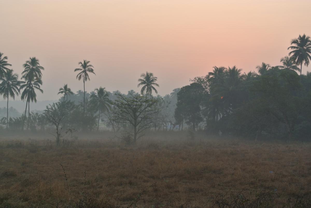 Рассвет в Гоа